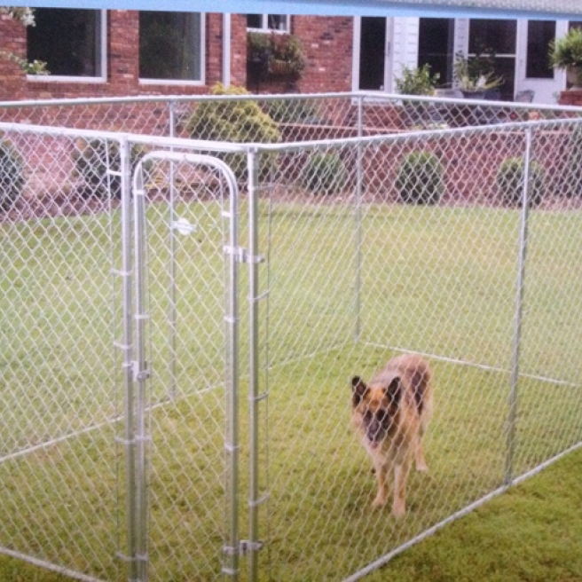 Large Petsafe Dog Run