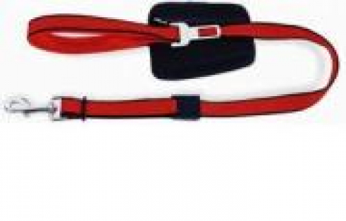 Patento Basic Line Lead