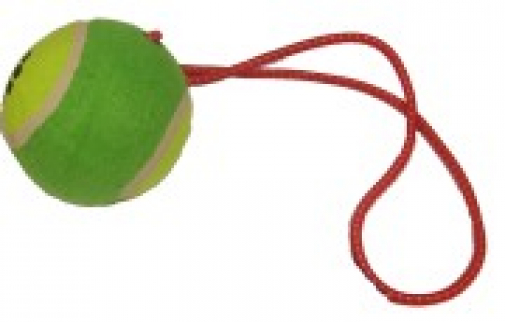 Tennis Ball On A Rope