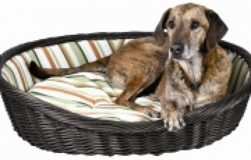 Wicker Basket Pet Bed With Stripped Washable Cushion